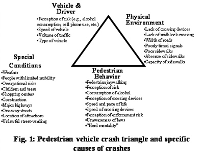 Pedestrian-vehicle crash traingle and specific causes of crashes